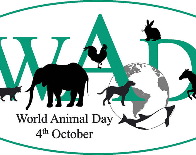Всесвітній день тварин